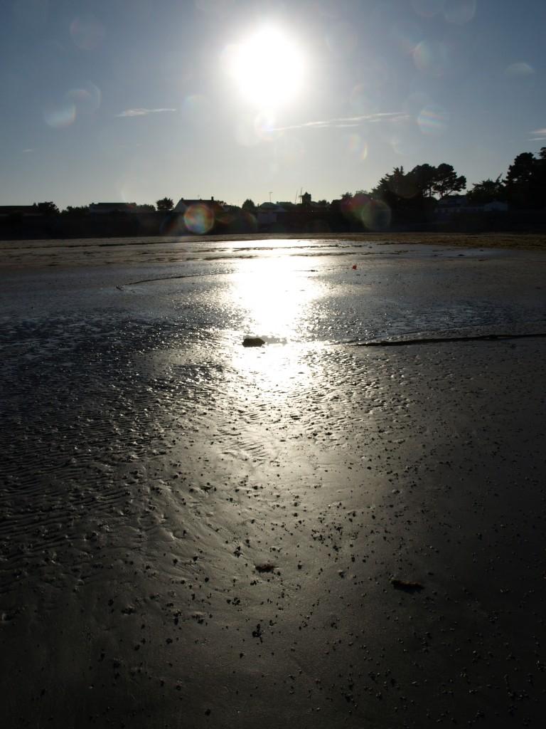 Ile d'Yeu (Vendée), juin 2011